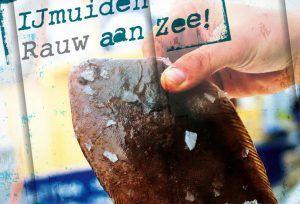 Proef Ijmuiden.nl